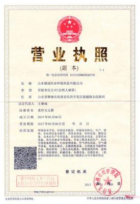 2017年5月8日山东德成恒业环保科技有限公司