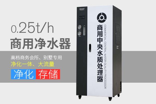 商用净水器0.25t/h